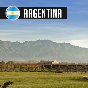 Wines of Argentina at WineMadeEasy.com