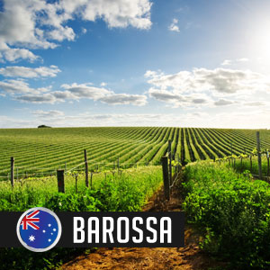 Wines of Barossa Valley at WineDeals.com