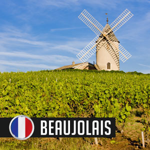 Wines of Beaujolais at WineDeals.com