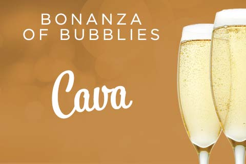 Bonanza of Bubblies - Cava | WineTransit.com