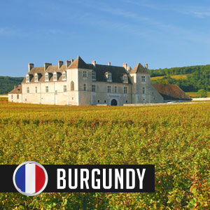 Wines of Burgundy at WineMadeEasy.com