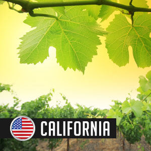 California Wines at WineDeals.com