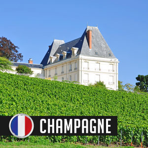 Wines of Champagne at WineMadeEasy.com