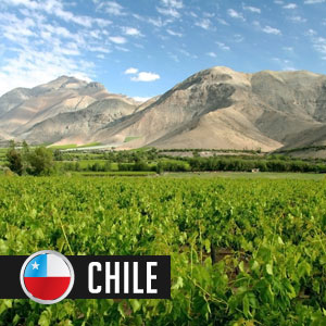 Wines of Chile at WineMadeEasy.com