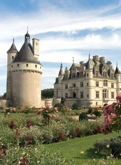 A French Chateau - French Wines