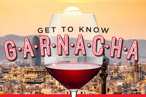 Get to Know Spanish Garnacha | WineTransit.com