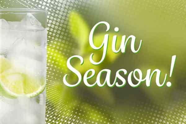 It's Gin Season - Get Refreshed!   WineTransit.com