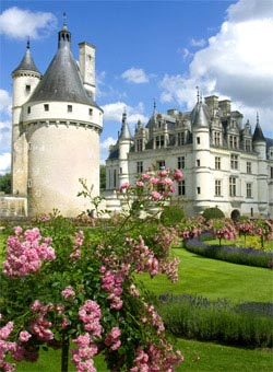 A castle in the Loire Valley - Loire Valley Wines