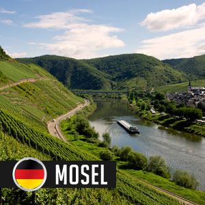 Wines of Mosel at WineMadeEasy.com