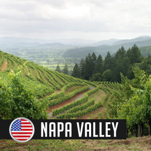 Wines of Napa Valley at WineMadeEasy.com