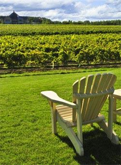 The New York Wine Region
