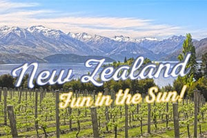 New Zealand: Fun in the Sun! Save up to 33% on some of our favorite New Zealand wines! | WineDeals.com