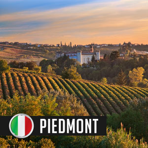 Wines of Piedmont at WineDeals.com