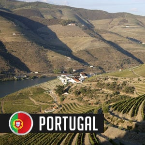 Wines of Portugal at WineDeals.com