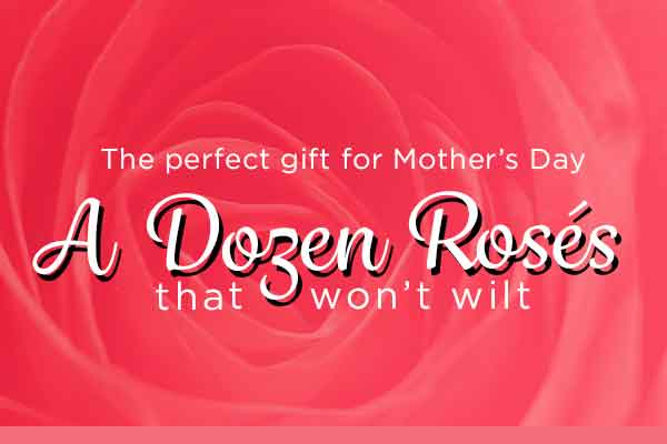 A Dozen Roses that won't wilt - the perfect gift for Mother's Day | WineTransit.com