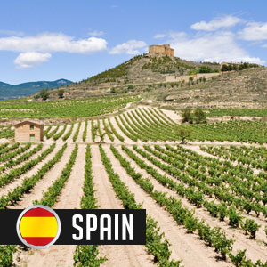 Wines of Wines of Spain at WineMadeEasy.com