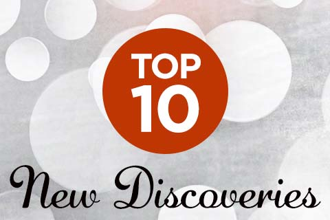 Our Top 10 New Discoveries | WineTransit.com