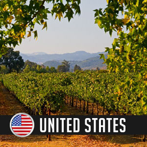 Wines of United States at WineDeals.com
