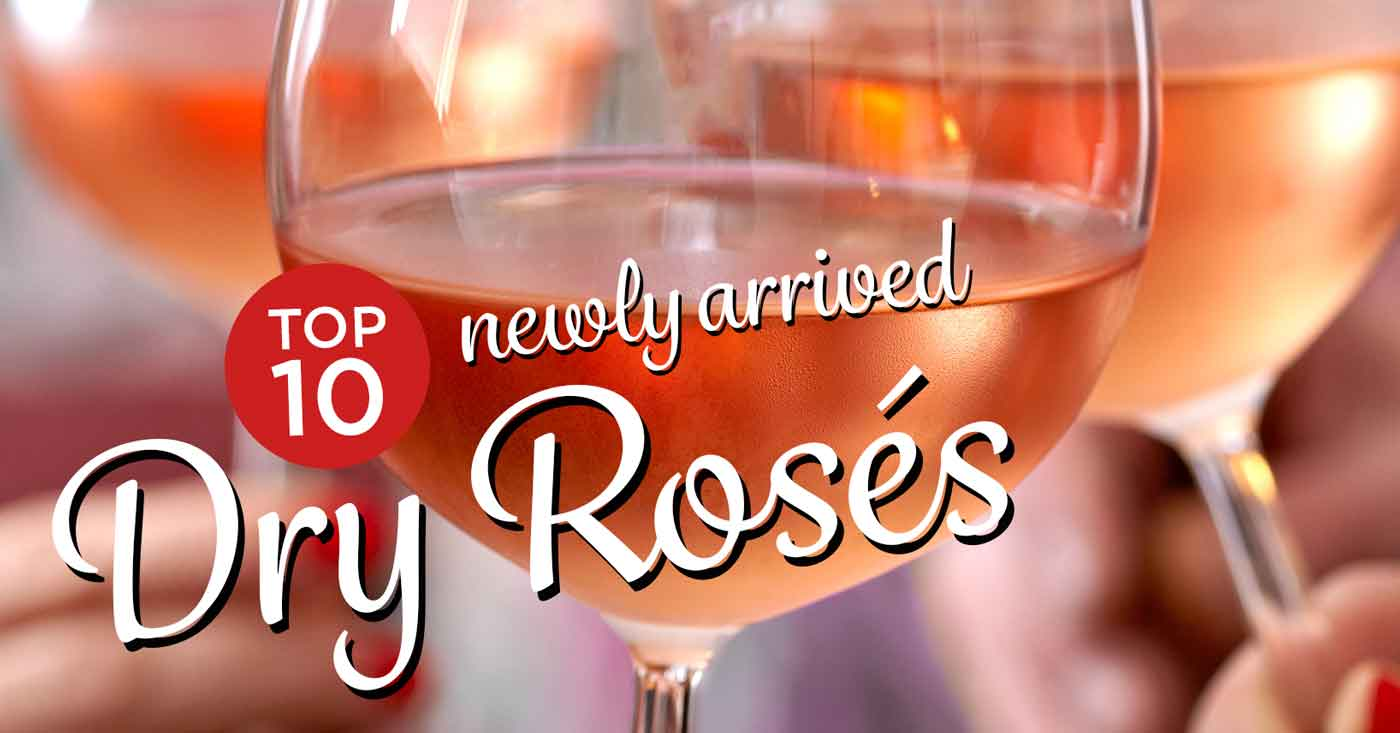 Top 10 Newly Arrived Dry Roses - Part 1