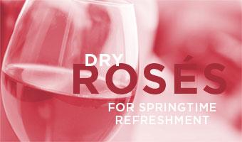 Dry Roses for Springtime Enjoyment