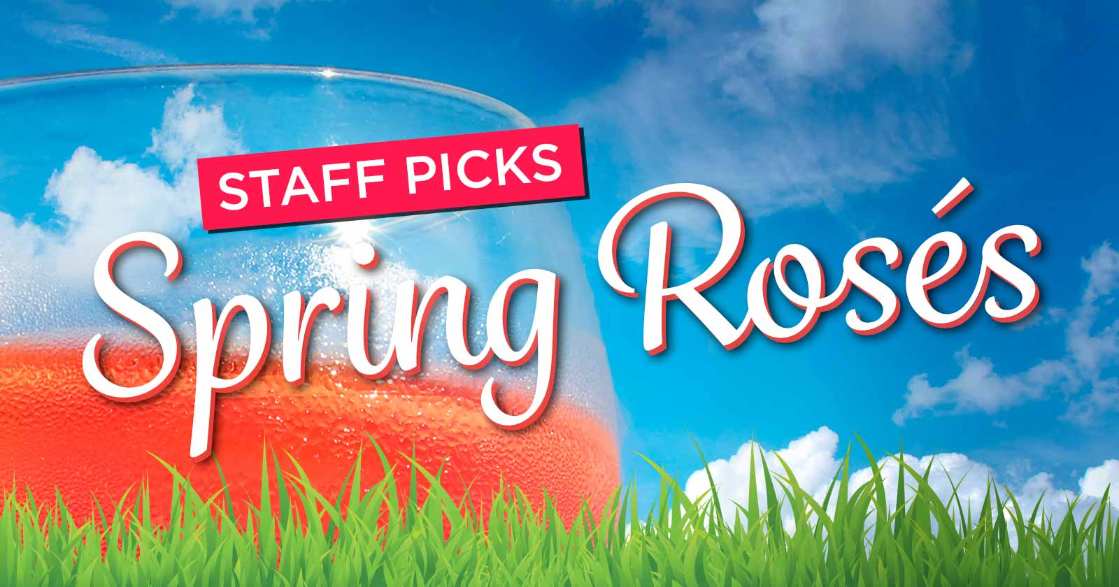 Staff Picks - Spring Roses