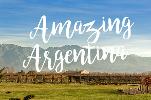 Save on Amazing Argentina | WineMadeEasy.com