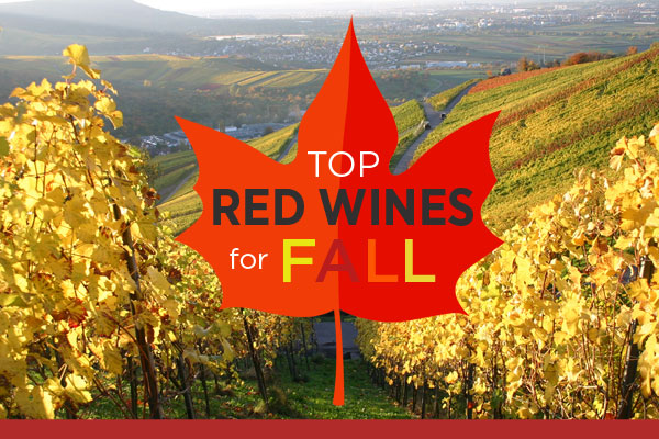 Top Red Wines for Fall | WineDeals.com