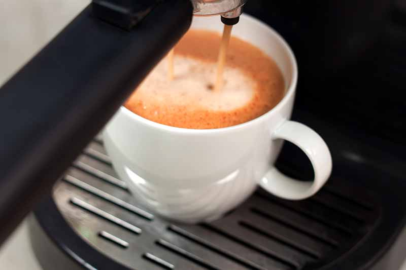 Shop the Best Coffeemakers at Premier Gourmet