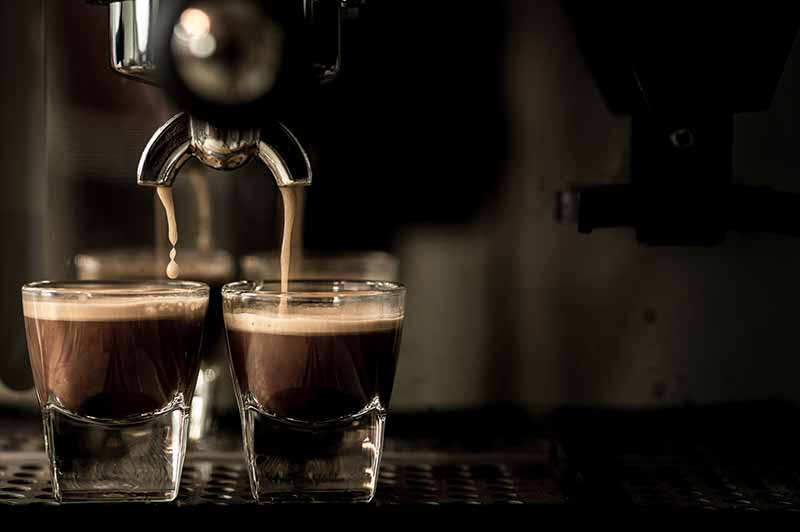 Purchase Premium Espresso Makers at Premier Gourmet