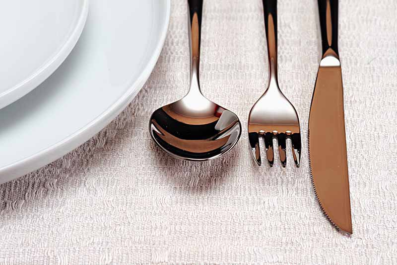 Find Fabulous Flatware at Premier Gourmet