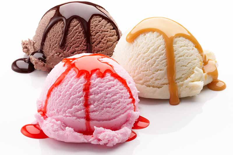 Find the Best Ice Cream Makers at Premier Gourmet