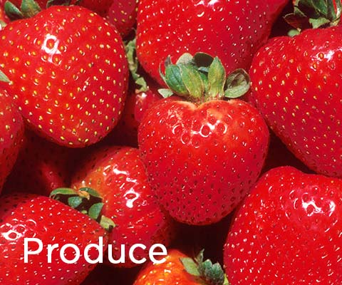 Shop Essentials: Produce at Premier Gourmet