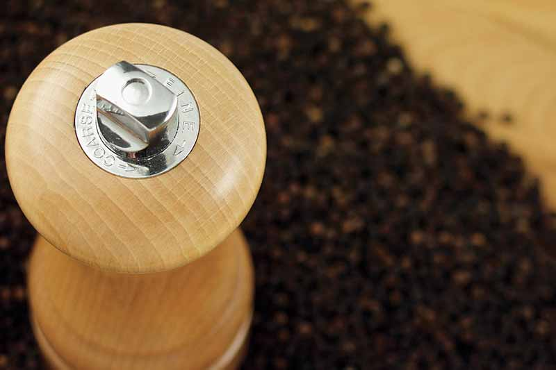 Buy the Best Salt and Pepper Mills at Premier Gourmet