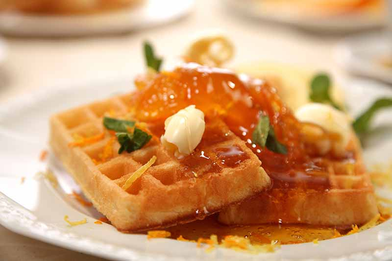 Browse High-End Waffle Makers at Premier Gourmet