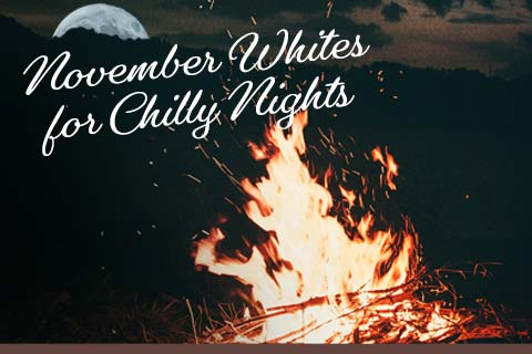 November Whites for Chilly Nights | WineMadeEasy.com