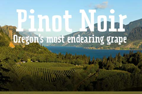 Taste Oregon's most endearing grape: Pinot Noir. | WineMadeEasy.com