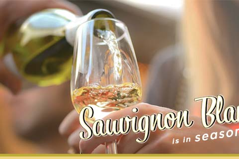 Sauvignon Blanc is in Season!   WineMadeEasy.com