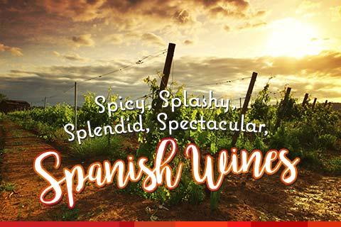 Spicy, Spectacular Spanish Wines | WineMadeEasy.com