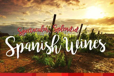 Spectacular, Splendid Spanish Wines | WineDeals.com
