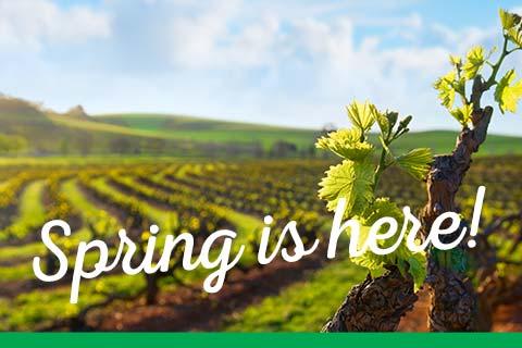 Spring is here! | WineMadeEasy.com