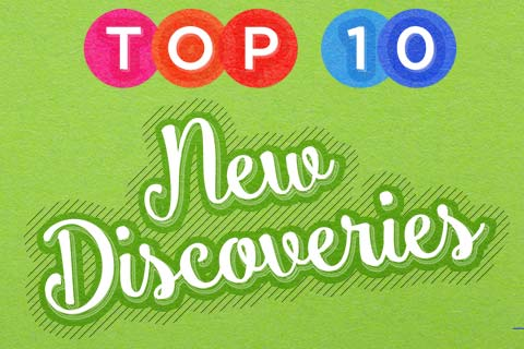Our Top 10 New Discoveries   WineMadeEasy.com