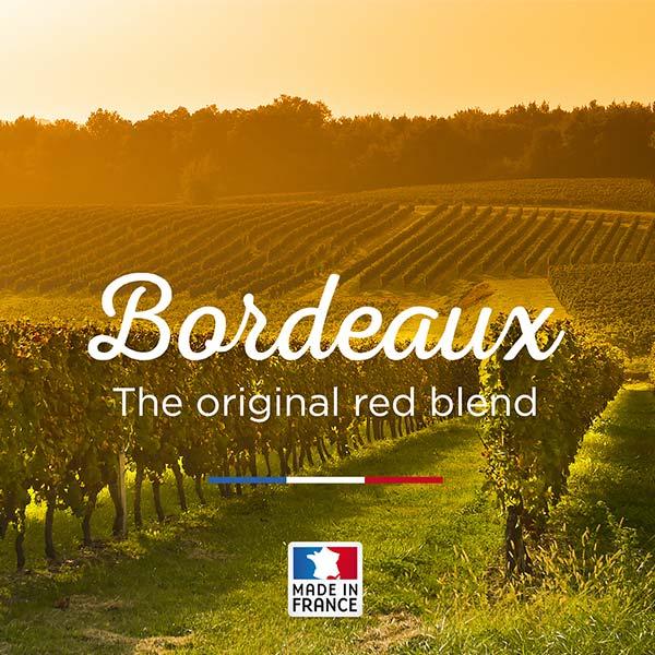 Bordeaux Bargains
