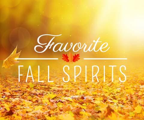 Fall Favorite Spirits | WineDeals.com