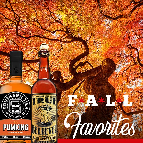 Fall Favorites are Here!