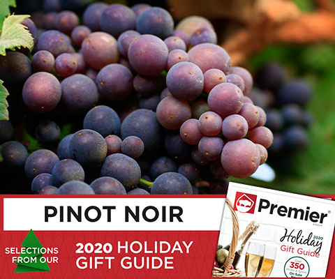 Holiday Gift Guide 2020: Pinot Noir | WineDeals.com