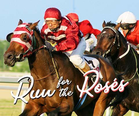 Kentucky Derby Bourbon and Rose Deals | WineTransit.com