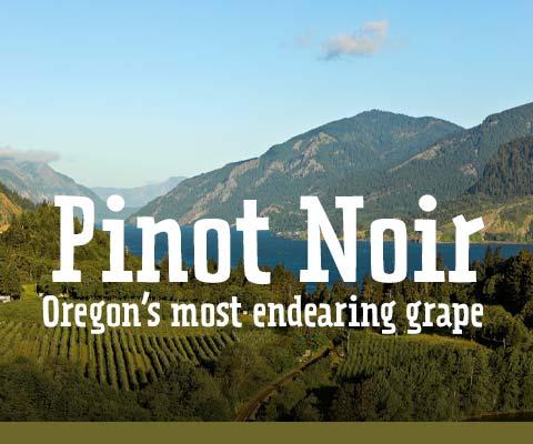 Willamette Valley Pinot Noir   WineMadeEasy.com