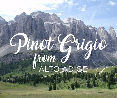 Pinot Grigio from Alto Adige | WineMadeEasy.com