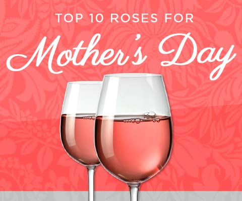 Top 10 Mother's Day Roses   WineTransit.com